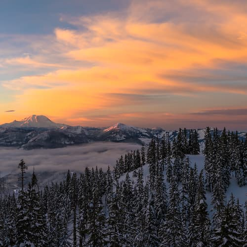 "Photo Release: ""Mount Rainier Golden Sunrise"" by Scott Rinckenberger"