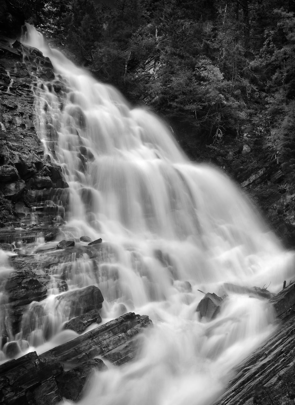 A very high resolution, large-format VAST photo print of the Bertha Falls waterfall in Waterton Lakes National Park; fine art nature photograph created by Steven Webster in Alberta, Canada