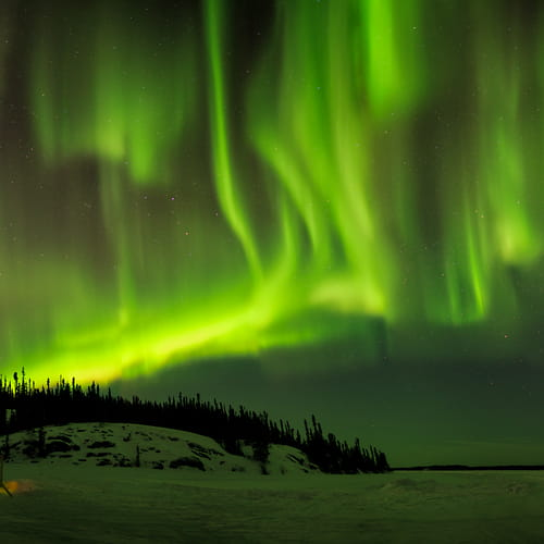 "Photo Release: ""The Green Curtains II"" by Scott Dimond"