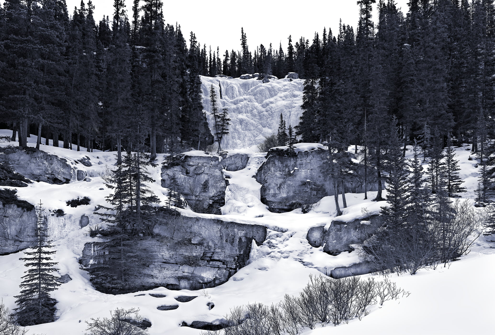 2,429 megapixels! A very high resolution, large-format VAST photo print of a frozen waterfall in winter with trees; fine art nature photo created by Steve Webster in Jasper National Park, Alberta, Canada