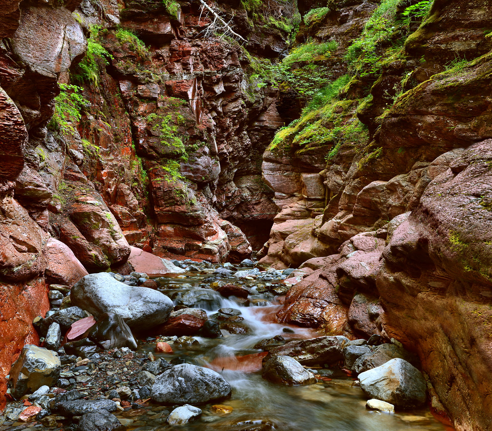 5,868 megapixels! A very high resolution, large-format VAST photo print of a stream, waterfall, and rocks; fine art nature photo created by Steve Webster in Red Rock Canyon, Waterton Lakes National Park, Alberta Canada