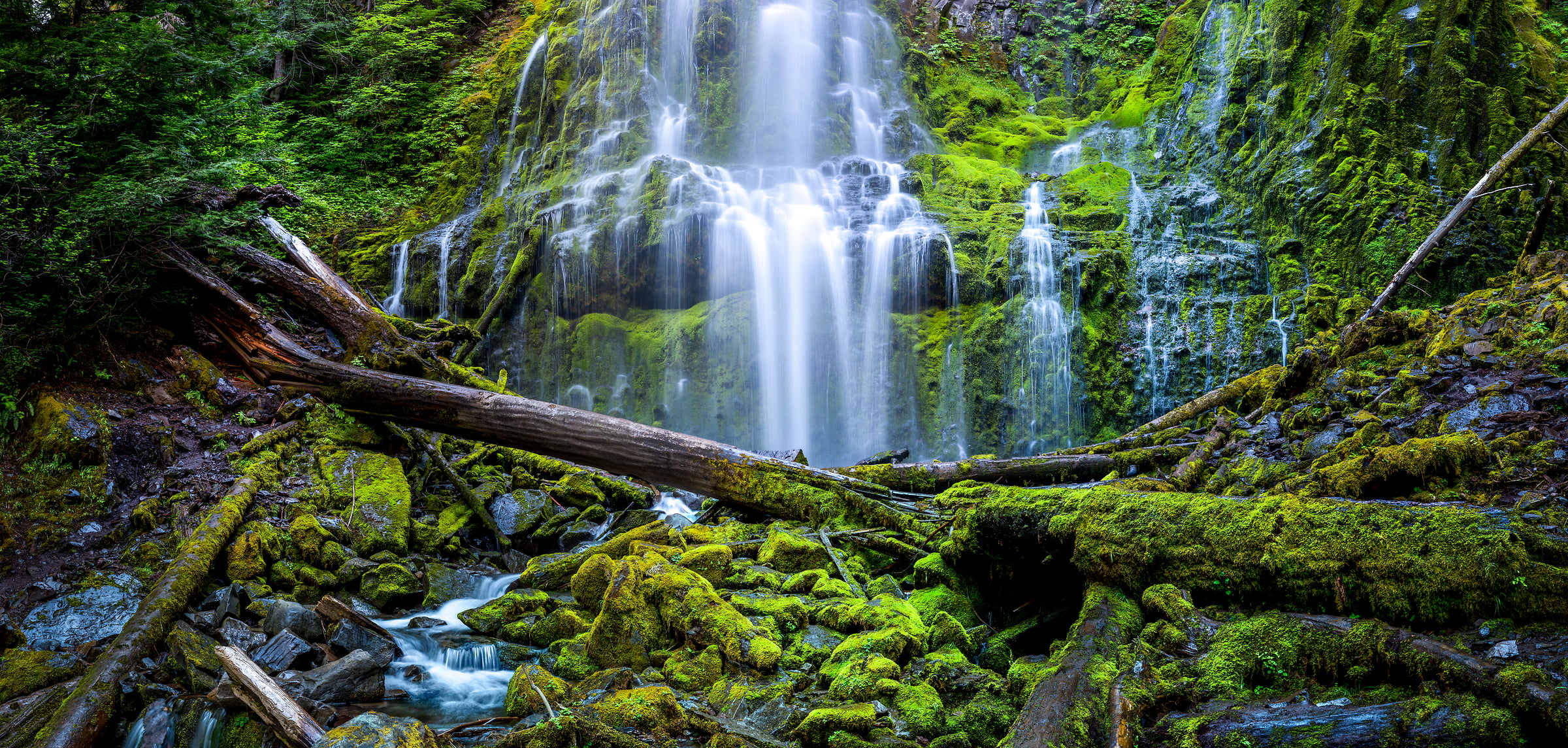 169 megapixels! A very high resolution, large-format VAST photo print of Proxy Falls: a lush green waterfall in Willamette National Forest; fine art nature photograph created by Tim Shields in Oregon