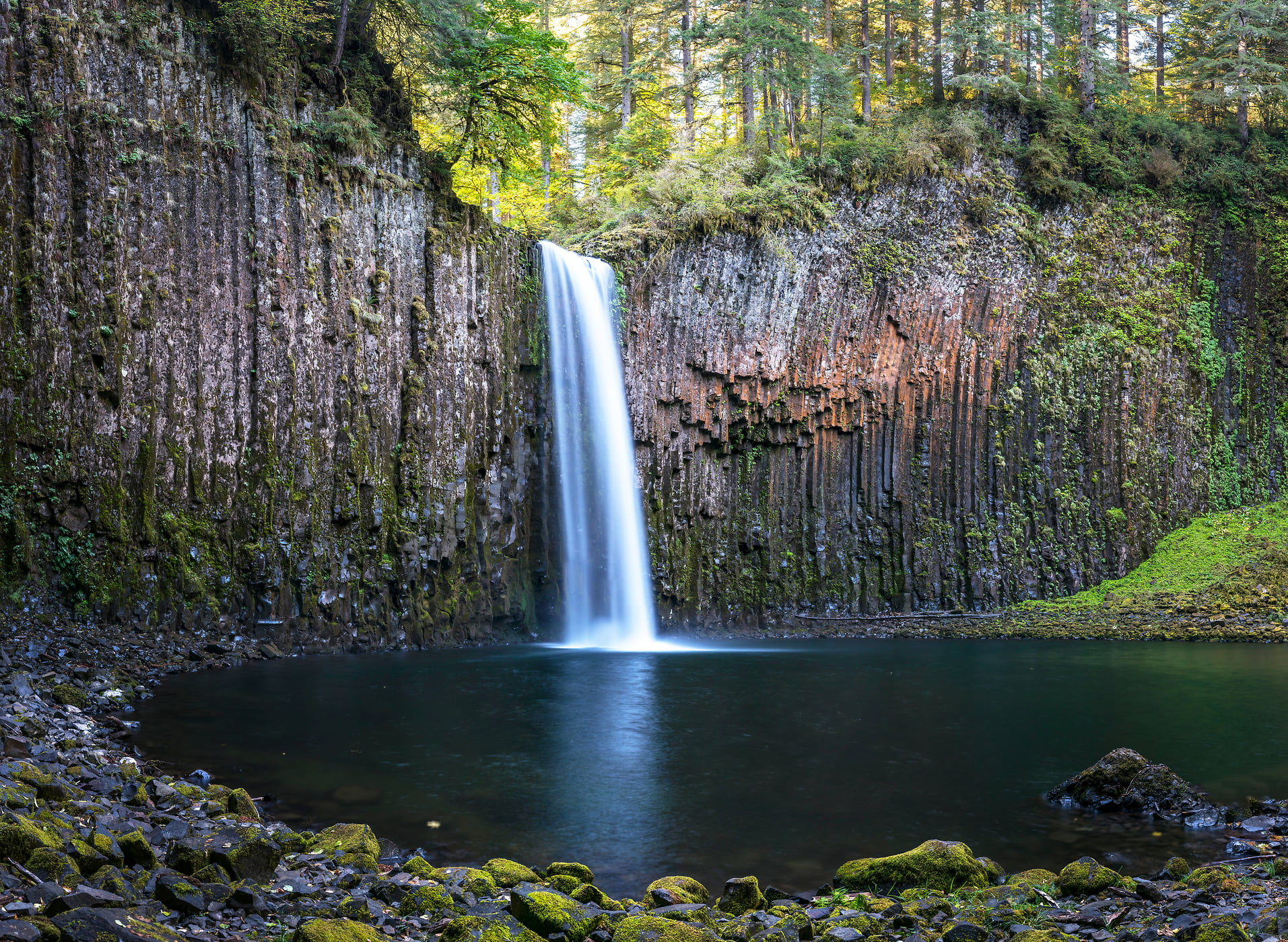 607 megapixels! A very high resolution, large-format VAST photo print of Abiqua Falls waterfall in a forest; nature fine art print created by Justin Katz in Oregon