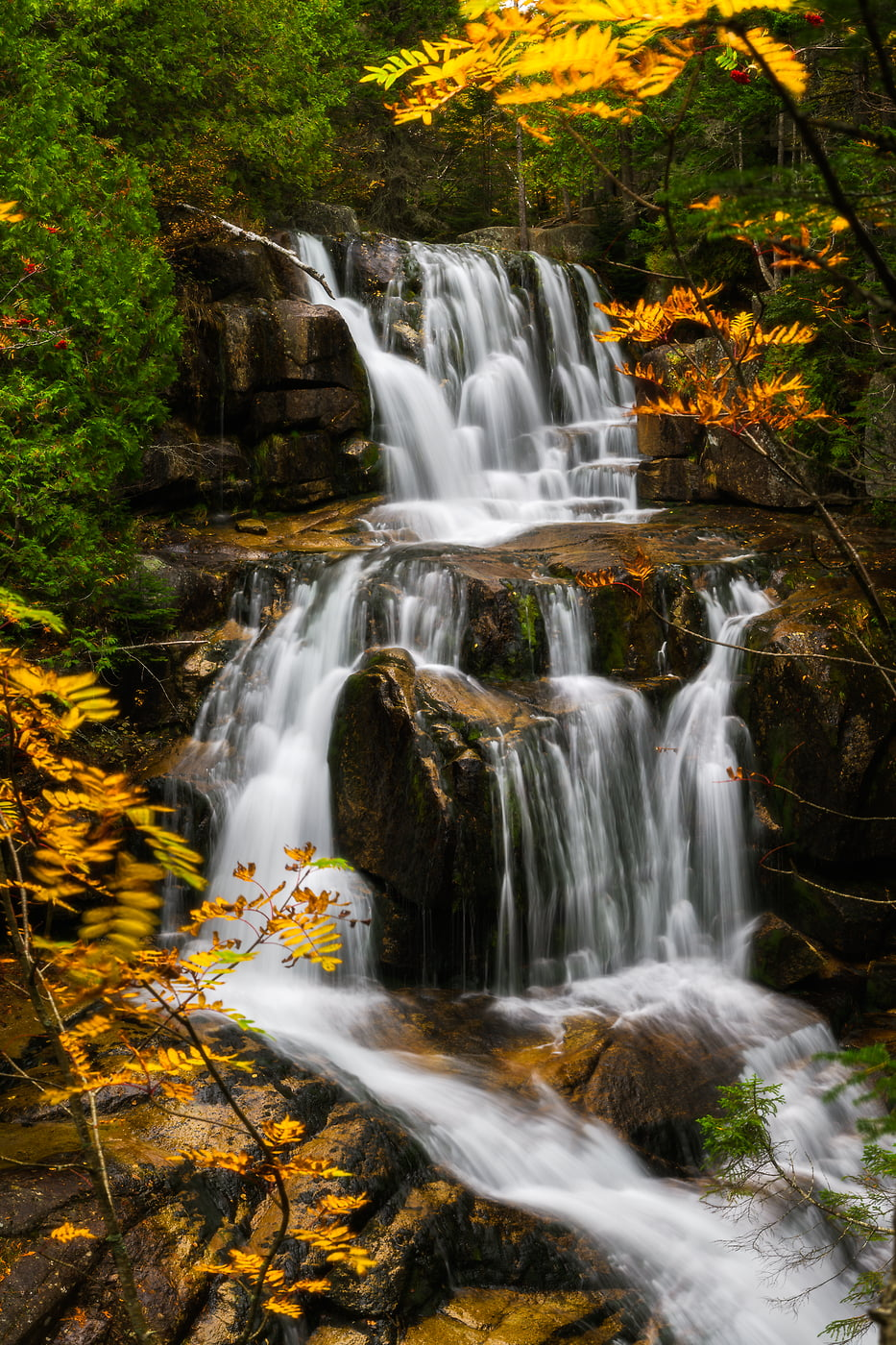 155 megapixels! A very high resolution, large-format photo of a New England waterfall with fall foliage; fine art nature photograph created by Aaron Priest at Katahdin Stream Falls on the Hunt Trail in Baxter State Park, Maine