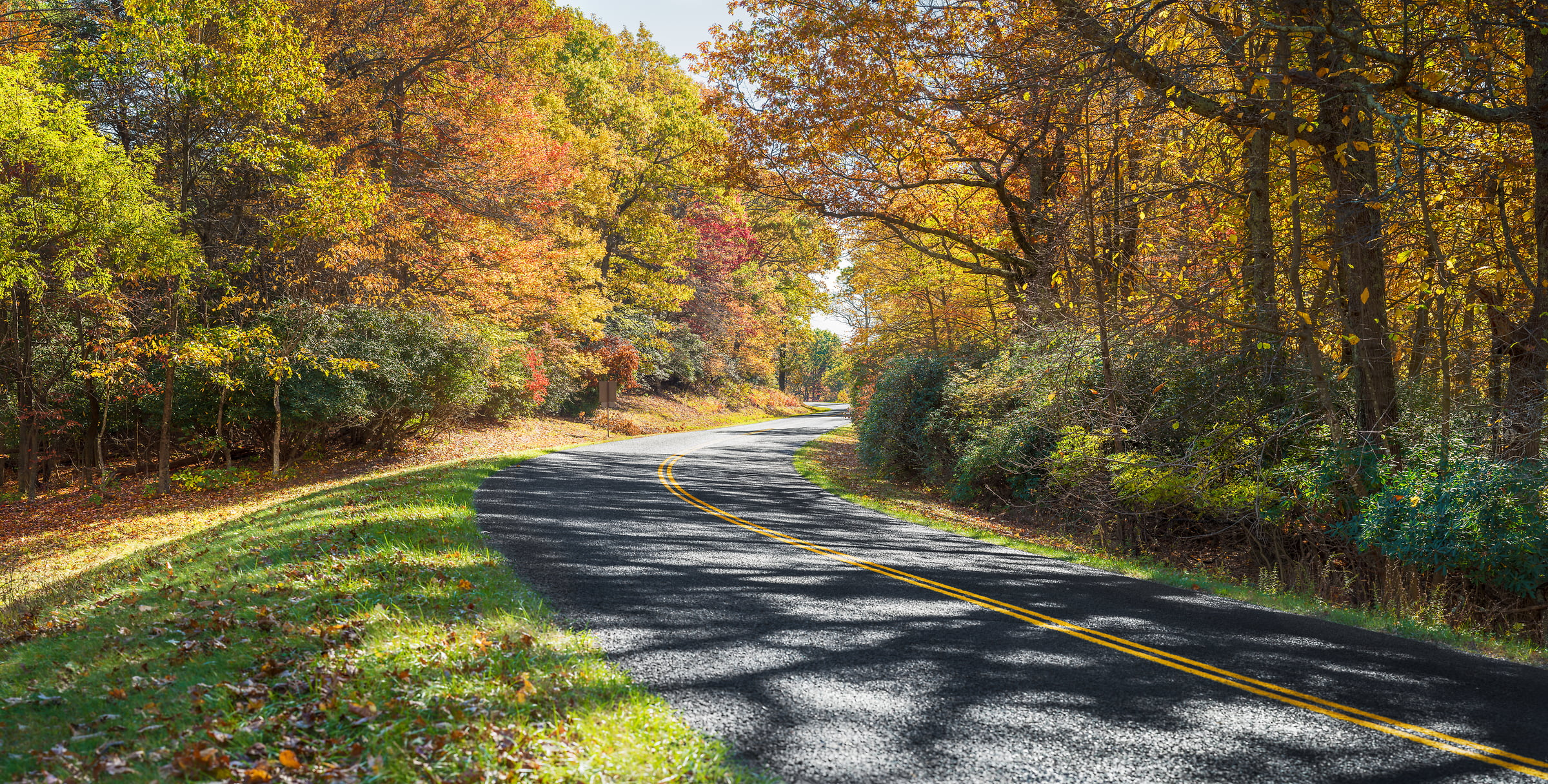 303 megapixels! A very high resolution, large-format VAST photo of a road curving through a forest in autumn with colorful fall autumn foliage; fine art photograph created by Jim Tarpo at Milepost 160, Blue Ridge Pkwy, Virginia