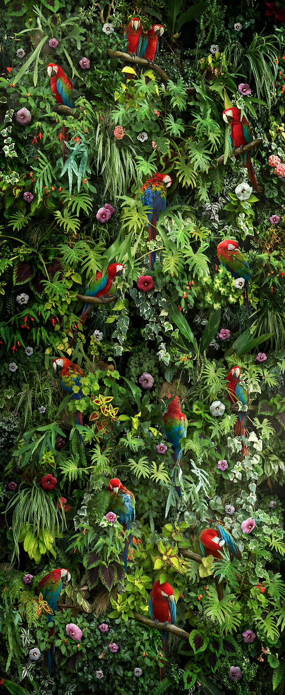 351 megapixels! A very high resolution, large-format VAST photo print of a jungle artwork; photographic artwork created by Nick Pedersen