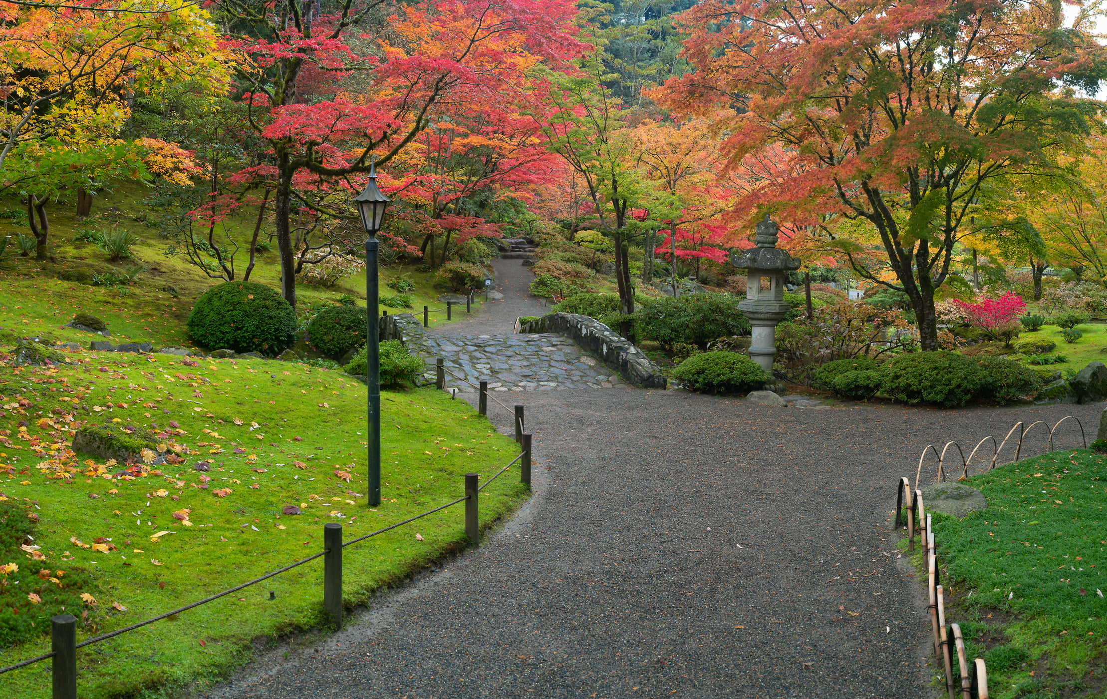 306 megapixels! A very high resolution, large-format VAST photo print of a colorful Japanese garden with fall foliage and a walkway; nature photograph created by Greg Probst in Japanese Garden, Seattle, WA