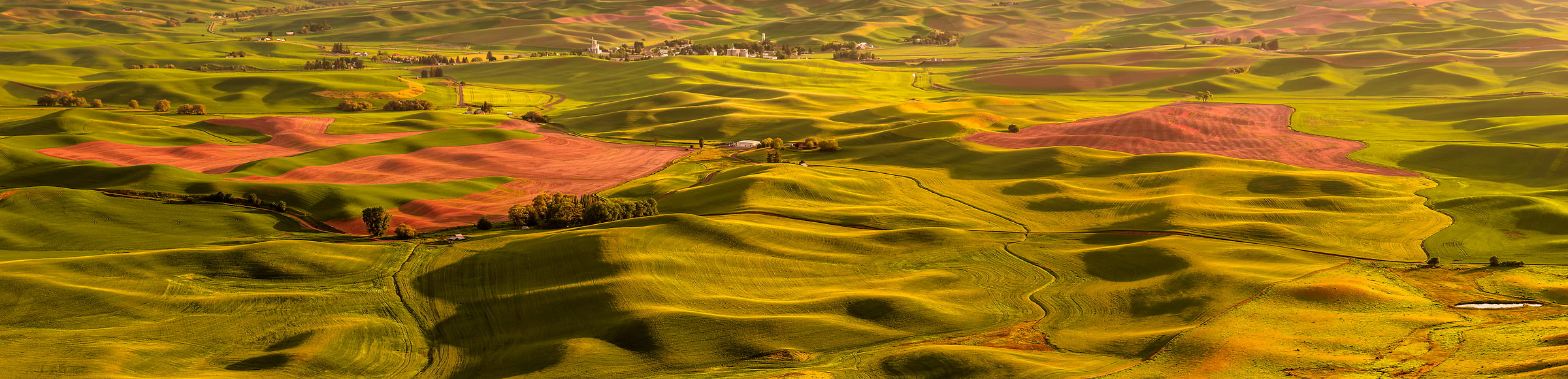 142 megapixels! A very high resolution, large-format VAST photo print of farms; landscape photograph created by Chris Collacott in Palouse, WA, USA