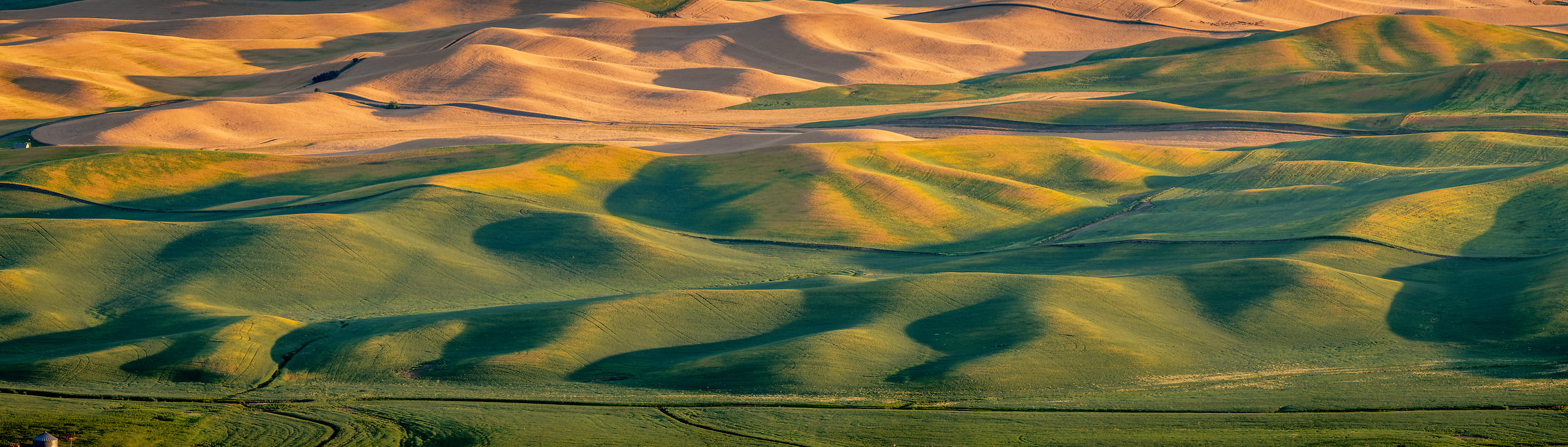 234 megapixels! A very high resolution, large-format VAST photo print of the fields and hills in Palouse, Washington; landscape photograph created by Tim Shields in Steptoe Butte, Washington