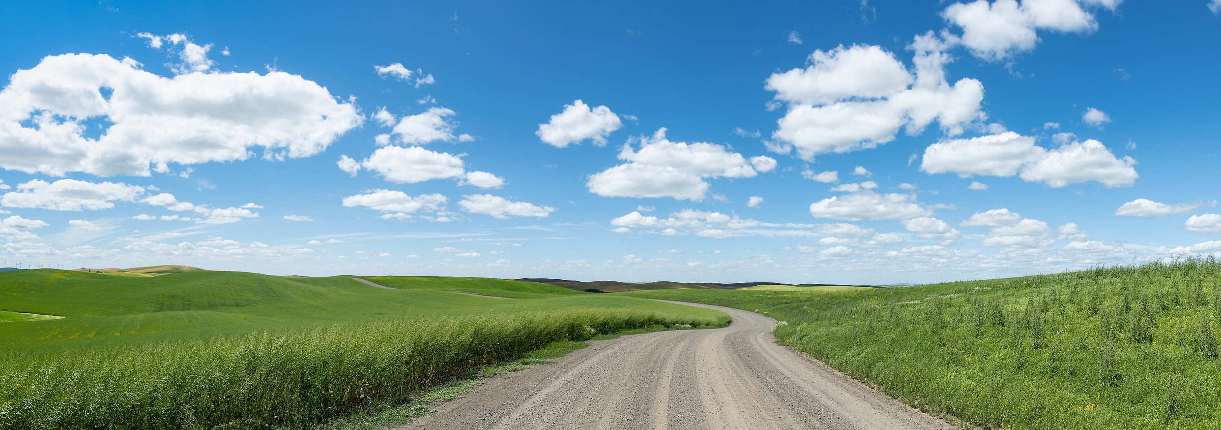 87 megapixels! A very high resolution, large-format VAST photo print of a road in farmland; landscape photograph created by Greg Probst in Palouse, Washington