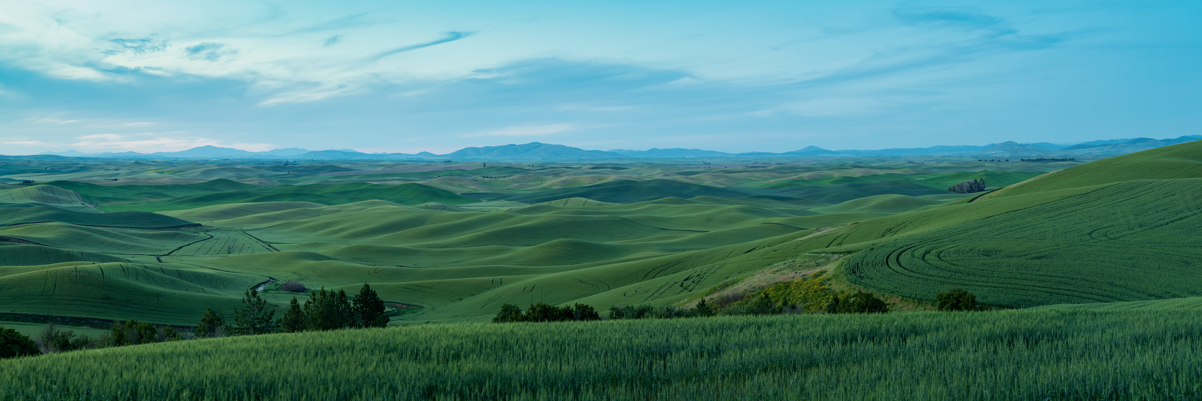 362 megapixels! A very high resolution, large-format VAST photo print of rolling hills at dusk; panorama landscape photograph created by Greg Probst in Steptoe Butte State Park, Washington
