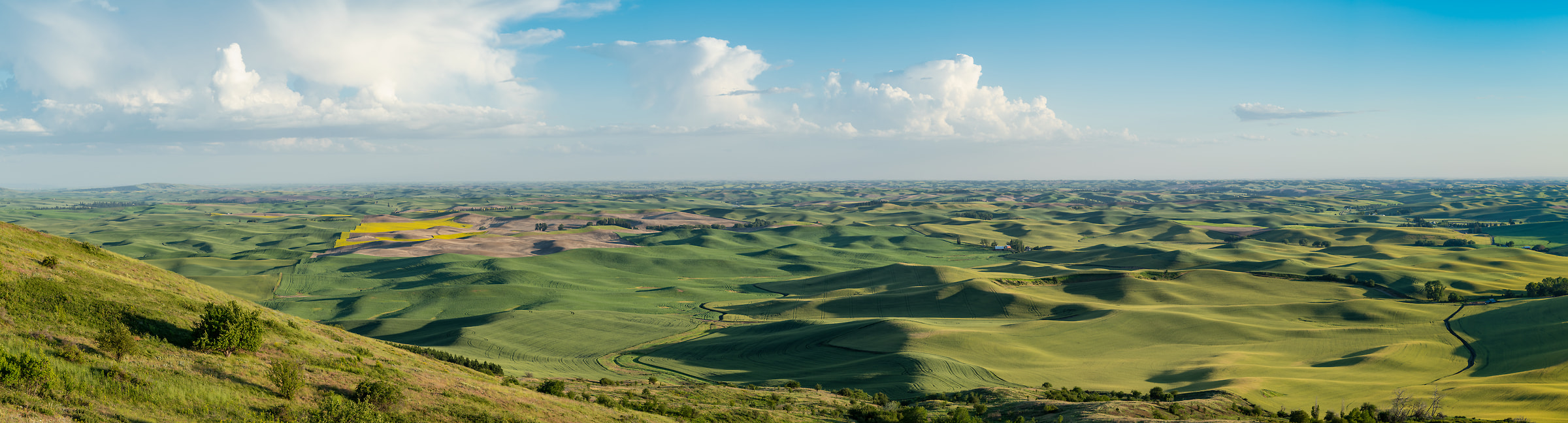 415 megapixels! A very high resolution, large-format VAST photo print of green rolling hills and a blue sky with clouds; landscape photograph created by Greg Probst in Steptoe Butte State Park, Washington