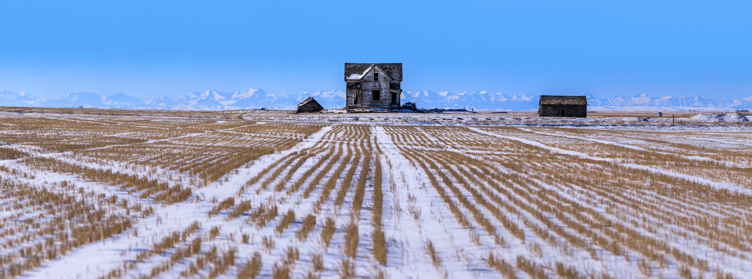 1,052 megapixels! A very high resolution, large-format VAST photo print of an abandoned house in a field on a prairie; landscape photograph created by Scott Dimond in Foothills County, Alberta, Canada